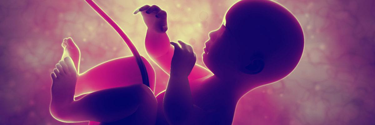 carla-iaconelli-medicina-reprodutiva-biopsia-de-embrioes